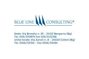 Blu Line Consulting